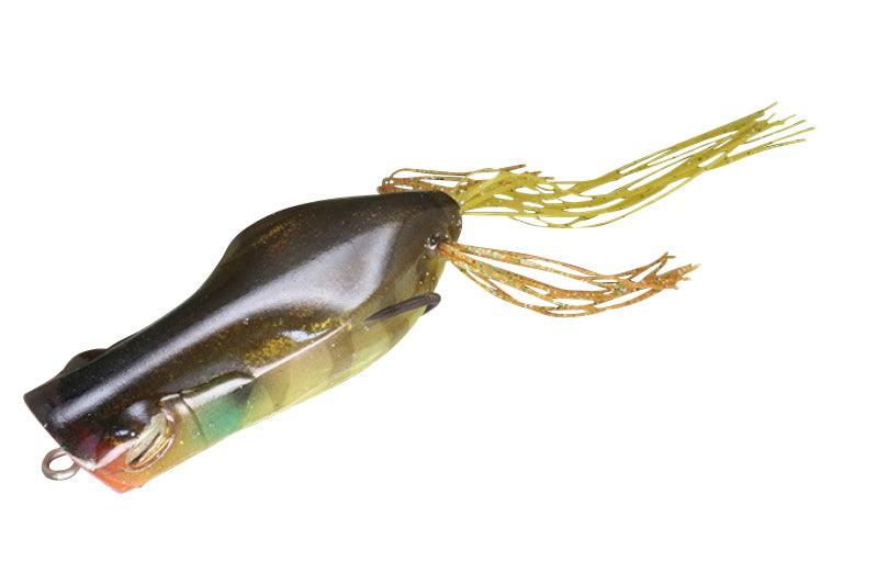 Gavacho Frog(ガヴァチョフロッグ)